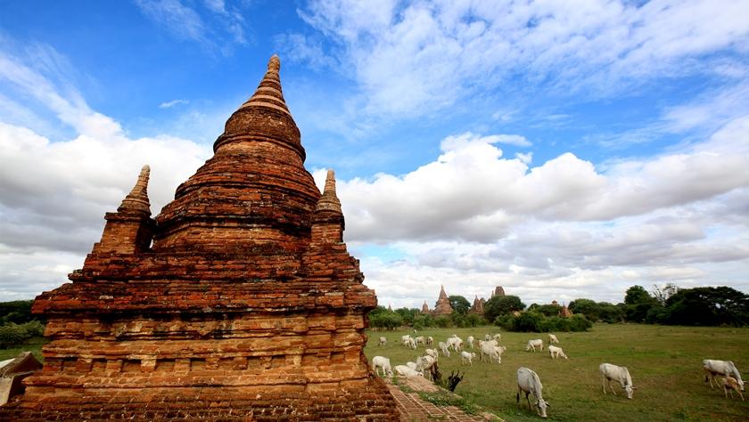 缅甸联邦共和国