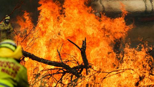 """英媒:澳大利亚否认山火与气候有关 英国研究报告""""打脸"""""""