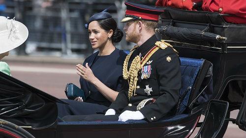"""英媒:哈里和梅根将在""""最严苛""""条件下脱离王室"""