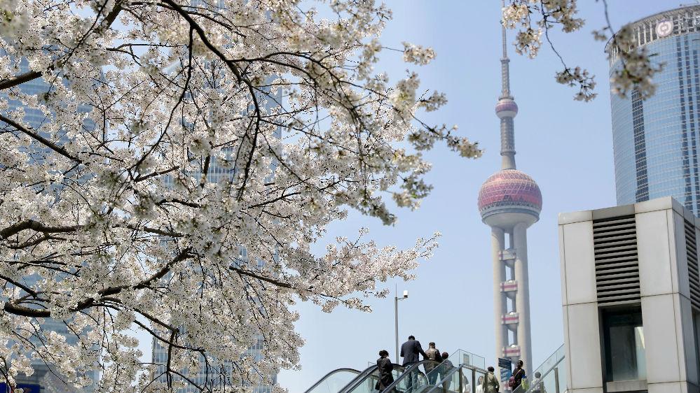 """西班牙女作家讲述疫情下的上海:""""我看到城市的坚持和人民的坚定"""""""