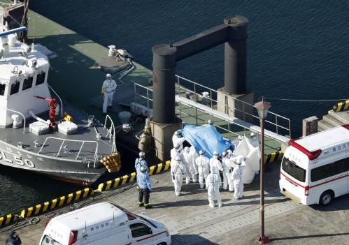"""船上隔离期进入最后阶段 英媒披露""""钻石公主""""号乘客现状"""