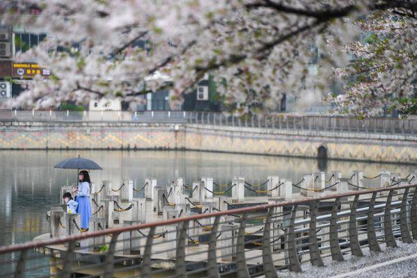 """武汉居民对走出家门充满期待:""""我想好好看看这座我出生的城市"""""""