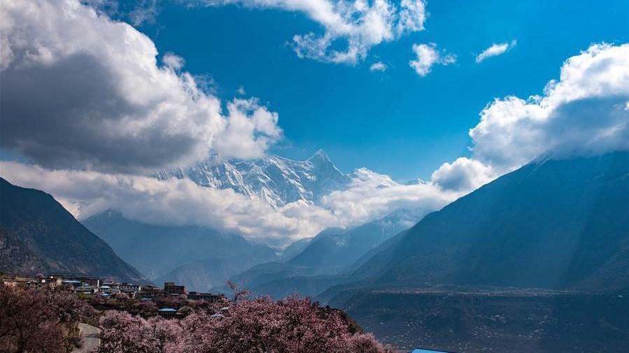 春到雅鲁藏布江大峡谷
