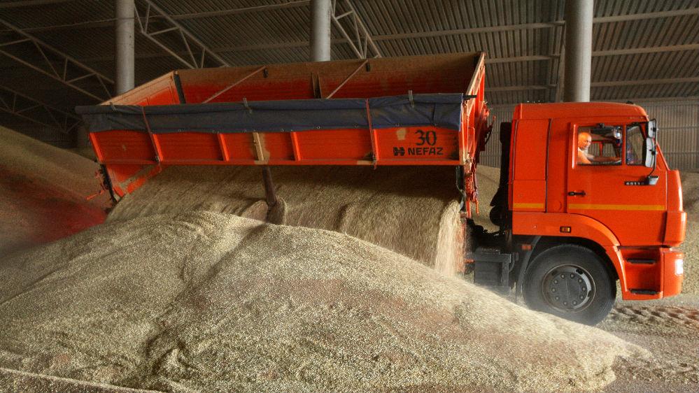 日媒:多国限制出口引发担忧 G20打响全球粮食保卫战