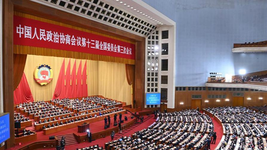 全國政協十三屆三次會議舉行第二次全體會議