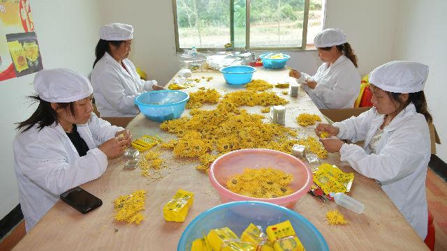 世界看中国脱贫 | 柬埔寨民间社会组织联盟项目计划部主任谢莫尼勒:中国成就让柬埔寨减贫更有信心