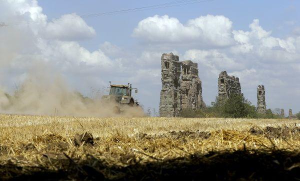 美媒文章:疫情使越来越多意大利人回归农业