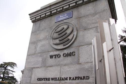 外媒:欧洲非洲角逐WTO新掌门职位