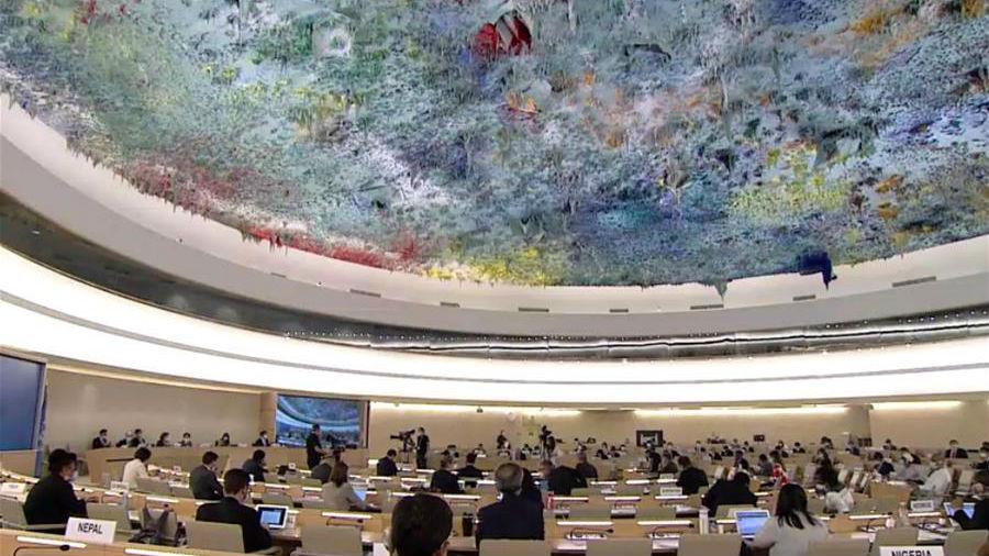"""联合国人权机构通过决议 对美国非裔男子遭遇暴力执法后死亡事件表示""""强烈谴责"""""""