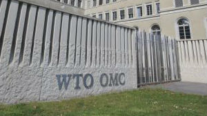 WTO总干事候选人名单出炉:八人角逐 最年长者73岁