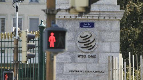 "WTO前总干事痛批美贸易政策:世贸组织成了美国""人质"""