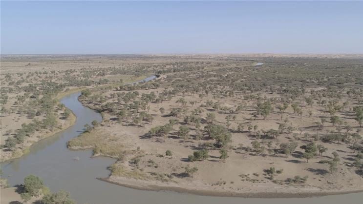 新疆第21次向塔里木河下游生态输水