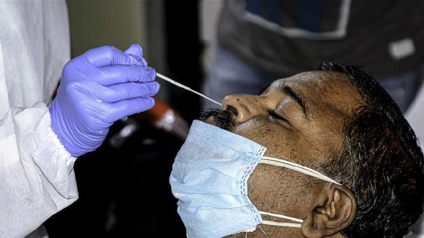 印度累计确诊病例突破500万例