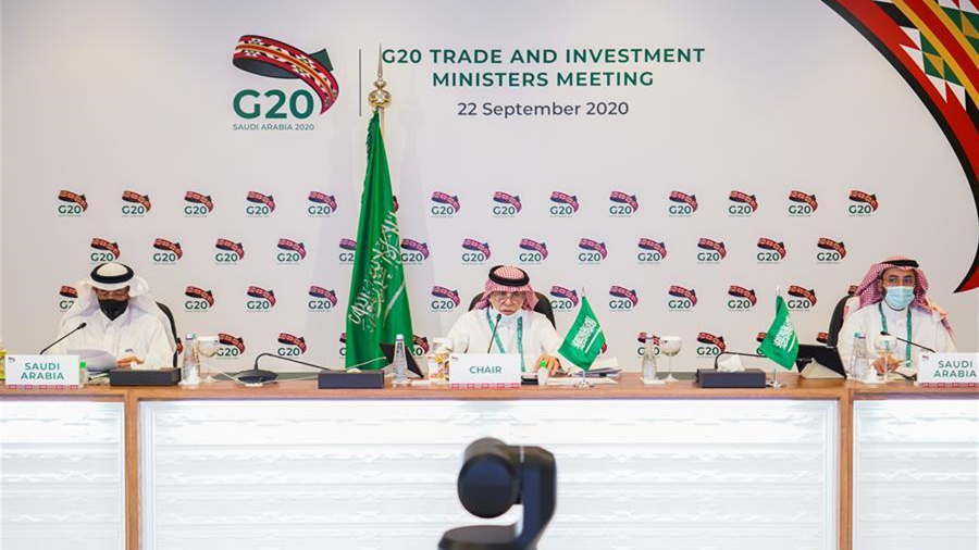 二十国集团贸易部长支持对世贸组织进行必要改革