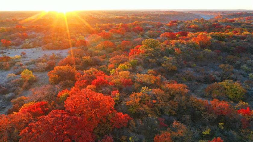 五彩斑斕的科爾沁秋景