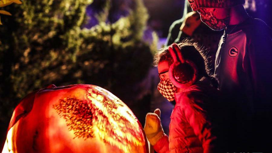 美國芝加哥植物園舉辦南瓜燈展