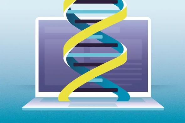 基因组打印