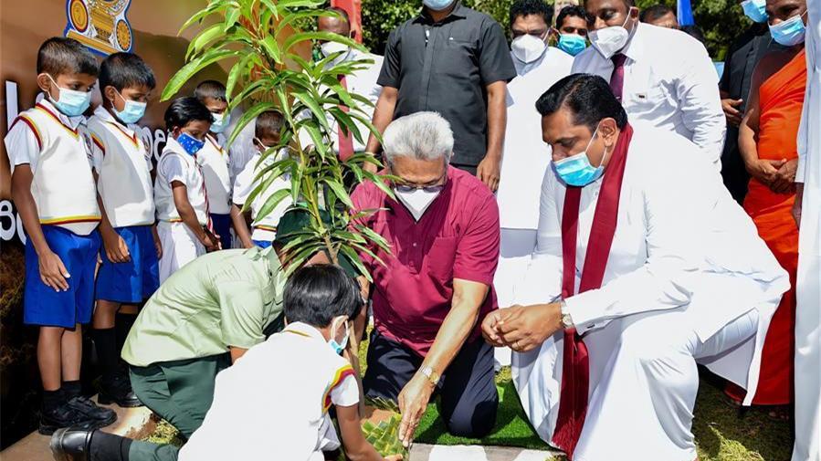 斯里兰卡总统启动儿童植树全国计划