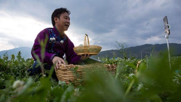 外媒分析:今年中国两会有何看点?