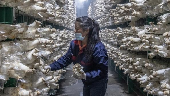 港报:中国用脱贫迎来下一发展阶段