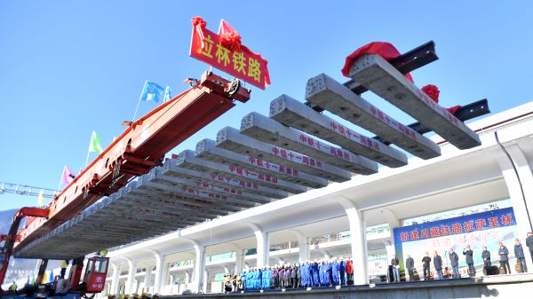 日媒:中国加快西藏经济开发步伐