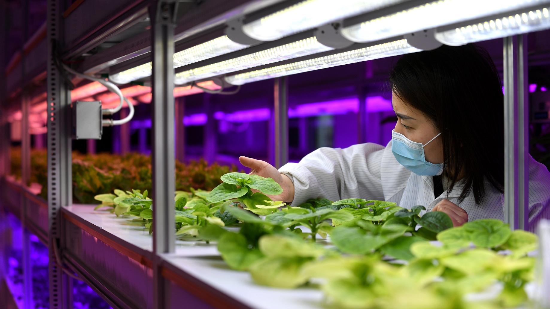 港媒:中国努力成为全球创新引擎