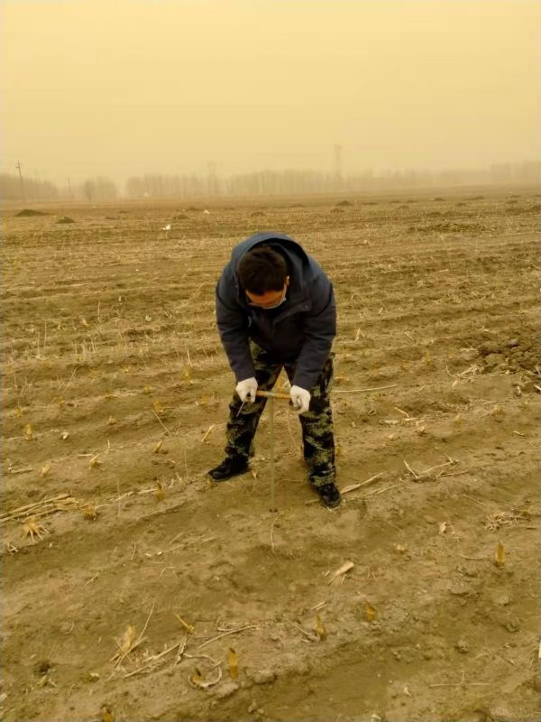 4.3月28日,内蒙古通辽市库伦旗。(巴特尔 摄)