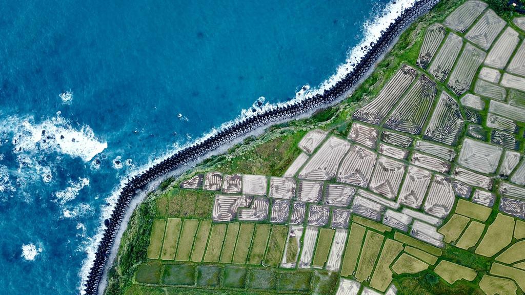 英媒述评:台湾缺水为何吸引世界关注?