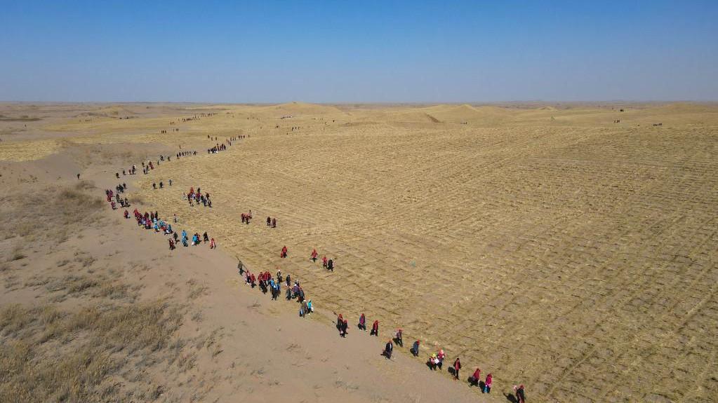 """用团结奋斗的大手,阻止两大沙漠""""握手"""""""