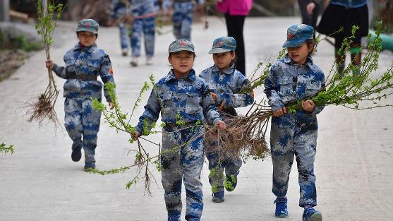 """德媒文章:中国植树造林筑起""""绿色长城"""""""