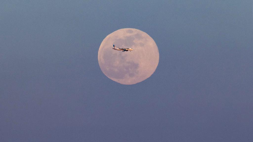 """""""超级月亮""""现身纽约夜空"""