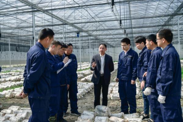 李明焱指导灵芝栽培