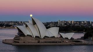 调查显示:澳民众支持重启对华关系