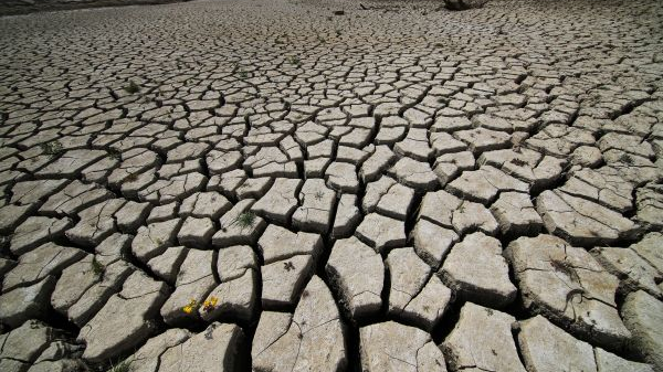 美媒:加州干旱意外解开56年前坠机之谜