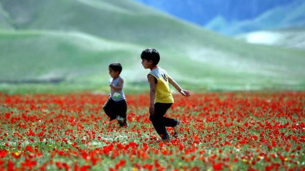 境外媒体:中国积极推动阿富汗和平进程