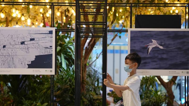 英媒文章:中国被视为生态保护领导者