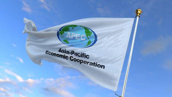 APEC领导人誓言:走出经济危机,不让任何人掉队