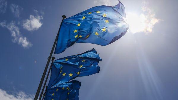 """欧洲对外关系委员会网站文章:欧盟各国对待""""印太""""存分歧"""