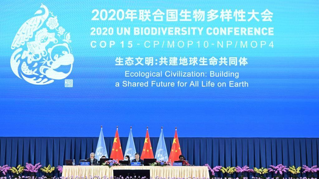 《生物多样性公约》第十五次缔约方大会在昆明开幕