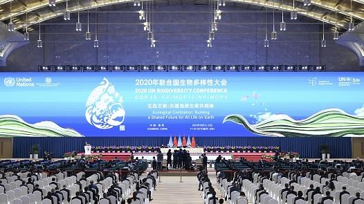 """港媒:COP15在""""新的乐观情绪""""中闭幕"""